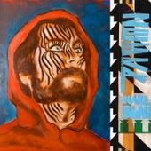 Zebra by Karl Blau
