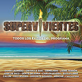 Supervivientes 2015 de Various Artists
