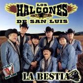 La Bestia by Los Halcones De San Luis