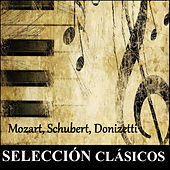Selección Clásicos - Mozart, Schubert, Donizetti by Various Artists