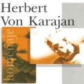 Herbert von Karajan de Vienna Philharmonic Orchestra