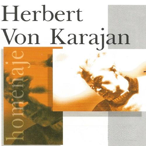 Herbert von Karajan by Vienna Philharmonic Orchestra