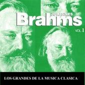 Los Grandes de la Musica Clasica - Johannes Brahms Vol. 1 by Various Artists