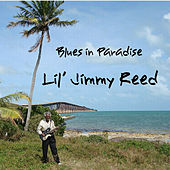 Blues in Paradise by Lil' Jimmy Reed