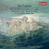 Beethoven: Piano Trio, Op.1 - Smetana: Piano Trio, Op. 15 - Schaeuble: Piano Trio, Op. 45 by Trio Fontane