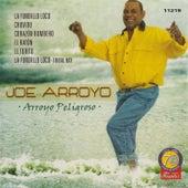 Arroyo Peligroso by Joe Arroyo