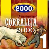 Ferias Fiestas y Festivales del 2000 de Various Artists