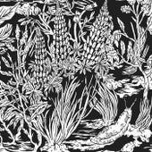 Wild Strawberries by Eternal Tapestry
