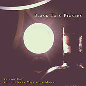 Yellow Cat / You'll Never Miss Your Mama de The Black Twig Pickers
