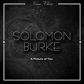 A Picture of You by Solomon Burke