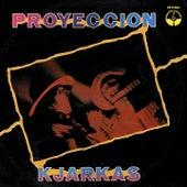 Abierto Mi Corazón (Folklore Andino) de Proyección