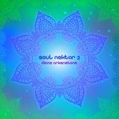 Soul Nektar 2 de Diane Arkenstone