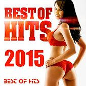 Best of Hits 2015 by Various Artists