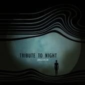 Tribute to Night by Jørgensen
