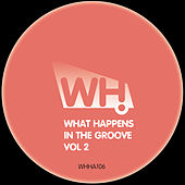 What Happens in the Groove Vol. 2 de Various Artists