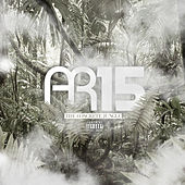 AR15 - Concrete Jungle de Various Artists