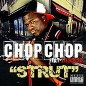 Strut Feat. Lil' Boosie von Boosie Badazz