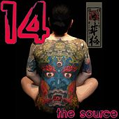 The Source Volume 14 de Various Artists