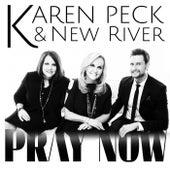 Pray Now by Karen Peck & New River