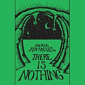 There Is Nothing von Ozric Tentacles
