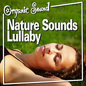 Nature Sounds Lullaby by Organic Sound