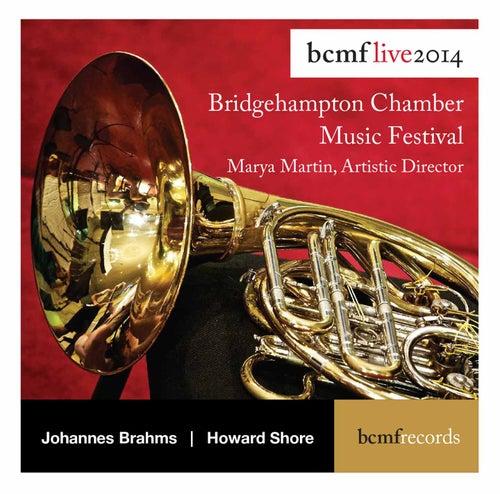Brahms: Serenade No. 1 - Shore: A Palace upon the Ruins (Live) von Howard Shore