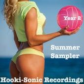 Hooki-Sonic Recordings Summer Sampler Year 2 by Various Artists