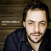 Guia de António Zambujo