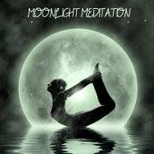 Moonlight Meditation by Various Artists