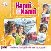 37/gefährden eine Freundschaft by Hanni und Nanni