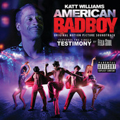 American Bad Boy by Various Artists