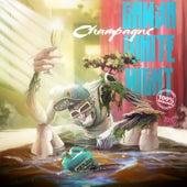 Champagne by Ganja White Night