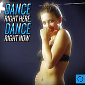 Dance Right Here, Dance Right Now von Various Artists
