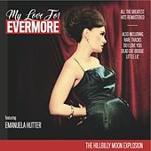 My Love for Evermore (All the Greatest Hits Remastered) by Hillbilly Moon Explosion