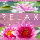 Relax Melodies, Descanso y Masaje Oriental. Volumen Tres by Various Artists