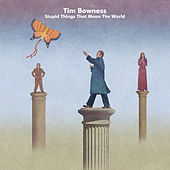 Stupid Things That Mean the World de Tim Bowness