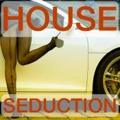 House Seduction (The House Selection) de Various Artists