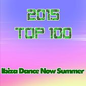 2015 Top 100: Ibiza Dance Now Summer by Various Artists