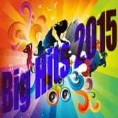Big Hits 2015 von Various Artists