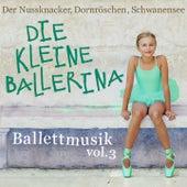 Ballettmusik: Die kleine Ballerina - Der Nussknacker, Dornröschen, Schwanensee, Vol. 3 von Various Artists