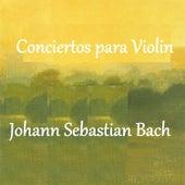 Bach - Conciertos para Violin by Various Artists
