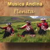 Musica Andina - Elenita de Kollasuyu Nan