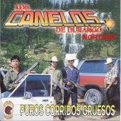 Puros Corridos Gruesos by Los Canelos De Durango