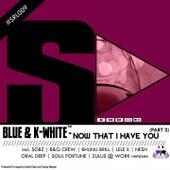 Now That I Have You, Pt. 2 de Blue