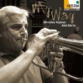 My Way by Ales Barta