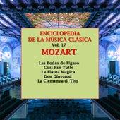 Enciclopedia de la Música Clásica Vol.17 by Various Artists