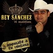 Asomate a Tu Ventana by Rey Sanchez