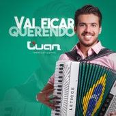 Vai Ficar Querendo - Single von Luan Forró Estilizado