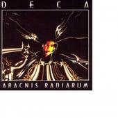 Aracnis Radiarum by Deca