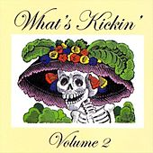 What's Kickin Volume 2 by Various Artists